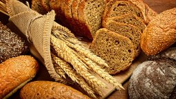 Carbohydrates: Composition, Storage, and Use